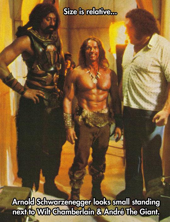 funny-Arnold-Schwarzenegger-Conan-Andre-Giant