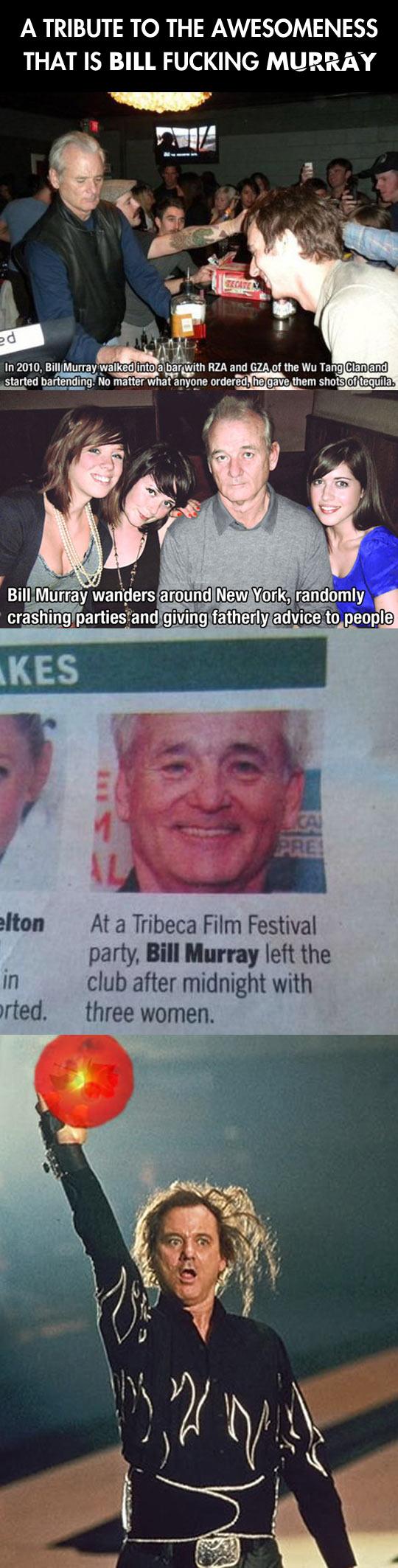 Bill Murray tribute...