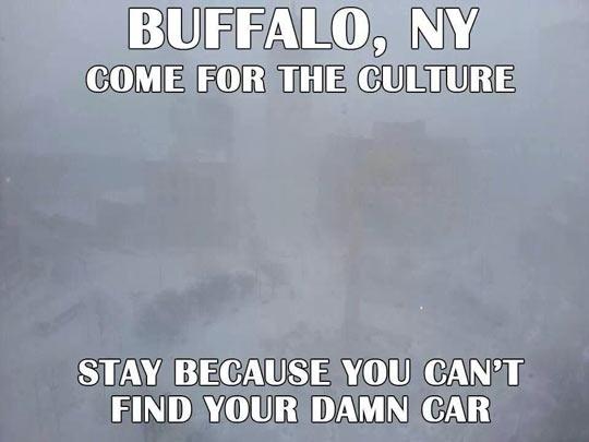 Welcome to Buffalo, NY…