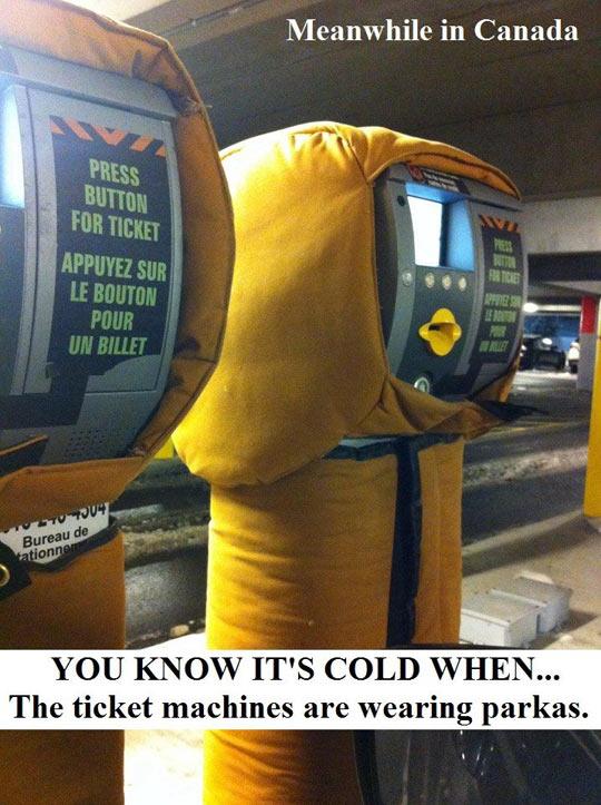 Cold in America? That's cute…