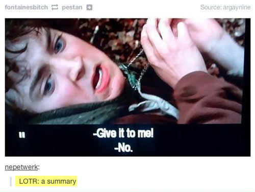 funny-LOTR-Frodo-ring-summary