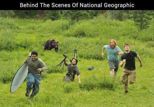 This is how documentaries work…