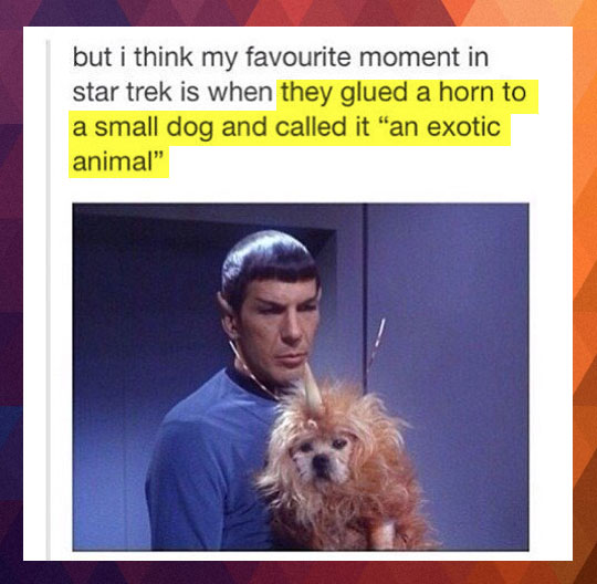 Favourite moment in Star Trek…