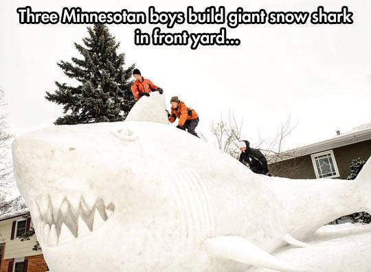 Giant snow shark…