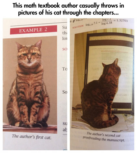 Best textbook ever…