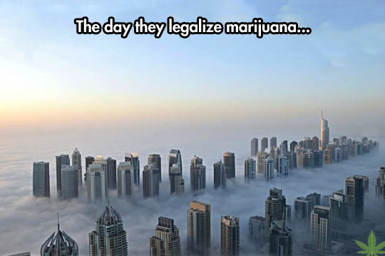 The day they legalize it…