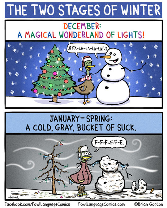 funny-comic-winter-Christmas-duck-snowman-stages