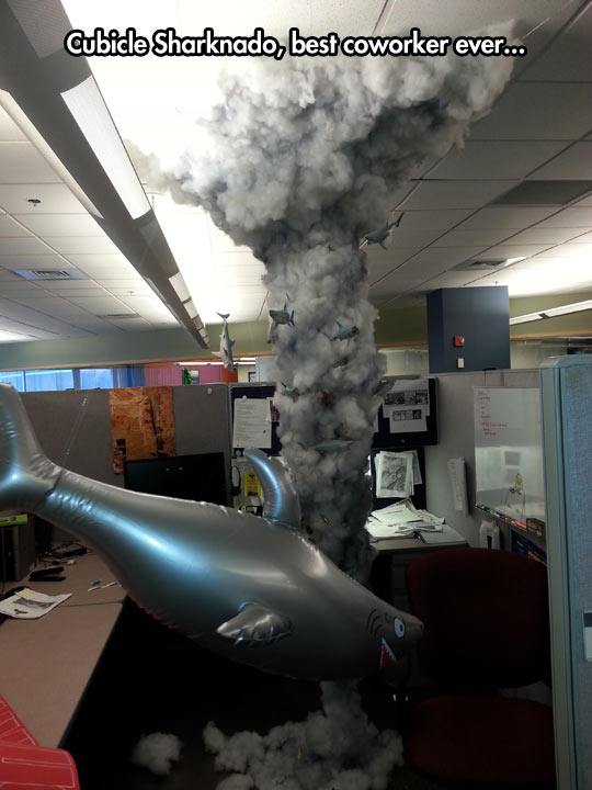 funny-cubicle-Sharknado-office-work