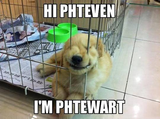 Hi Phteven…