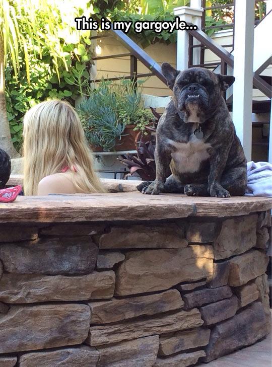 funny-dog-french-bulldog-gargoyle