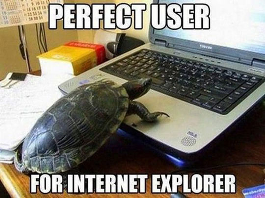 Internet explorer user…