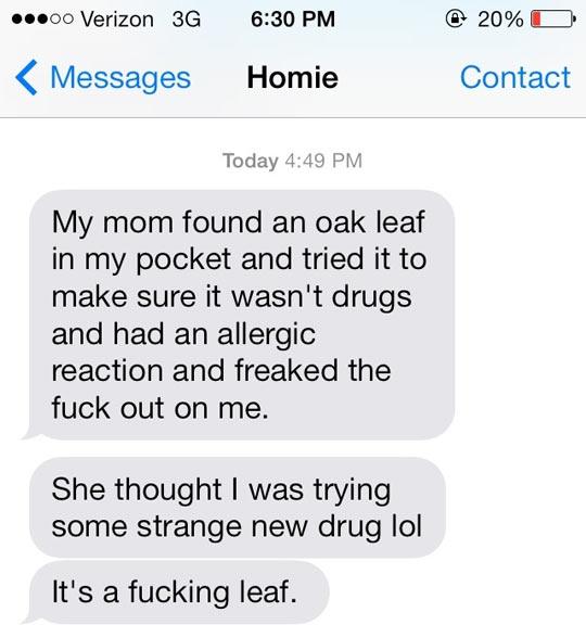 funny-oak-leaf-pocket-drug