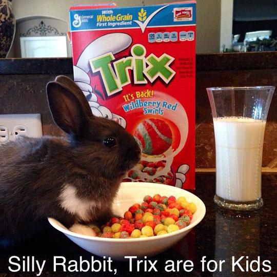 Mom! There's a hare in my cereal!