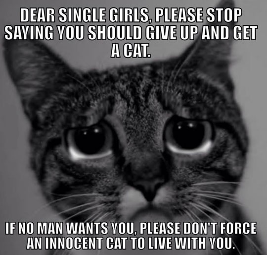 To all the single ladies…