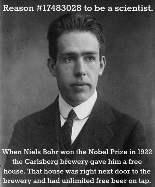 funny-scientist-Niels-Bohr-Nobel