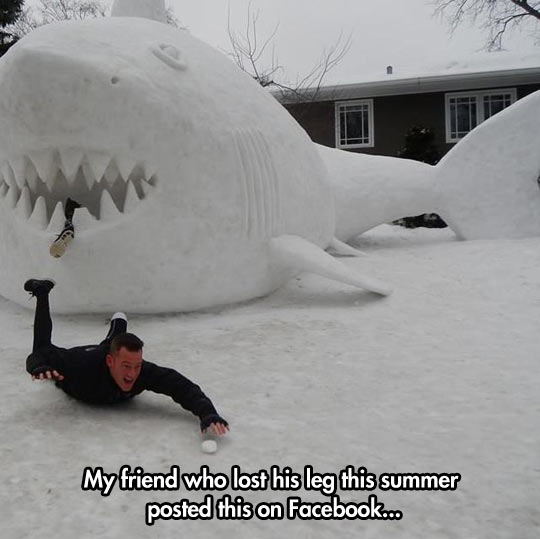 funny-shark-leg-Facebook-snow