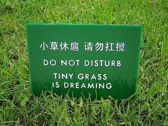 funny-sign-grass-Chinese-dreaming
