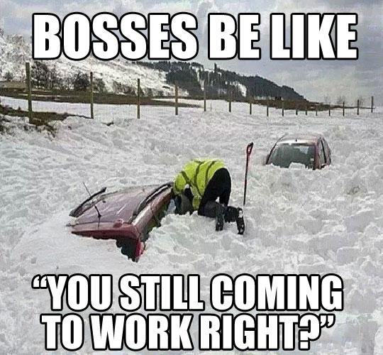 funny-snow-car-buried-boss-work