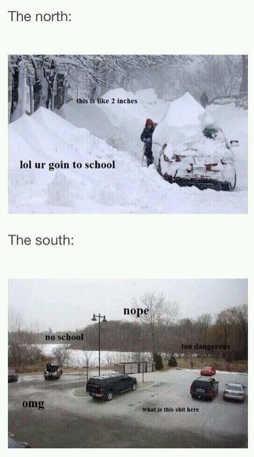 Snow days…