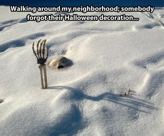 funny-snow-skull-skeleton-Halloween