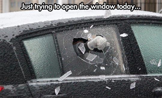 funny-snow-winter-car-window
