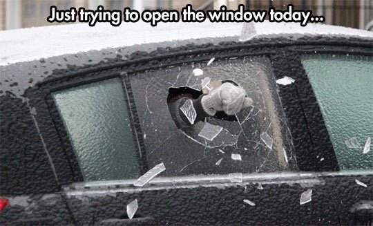 Winter got serious…