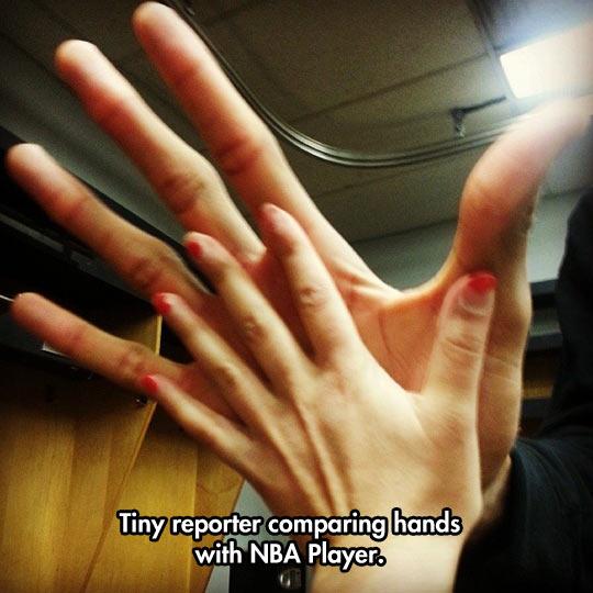 Giannis Antekounmpo's hand…