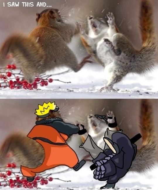 Naruto squirrel…