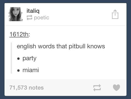 funny-words-English-Pitbull-party-Miami