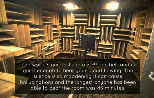 Imagine if you had tinnitus…