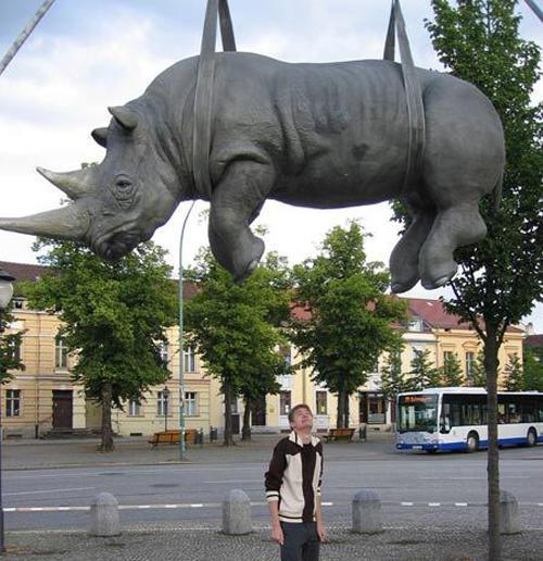 wtf-statues-rhino-lift