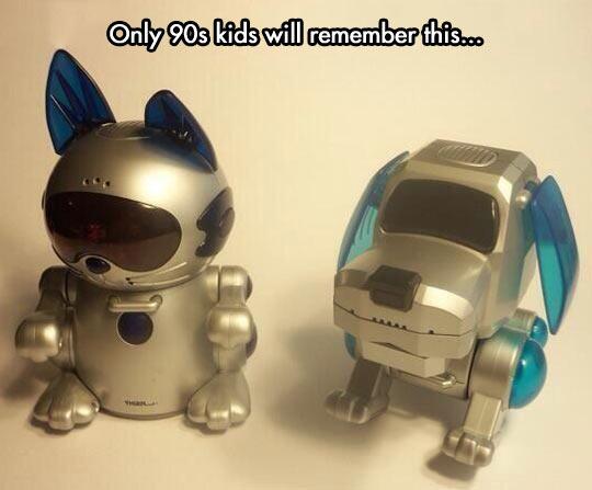 cool-Poochie-dog-cat-robot