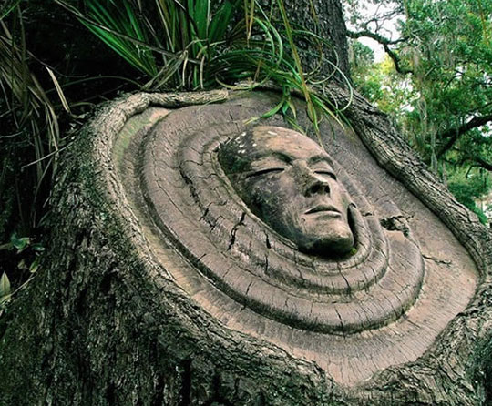 Carved in a forest by Keith Jennings…