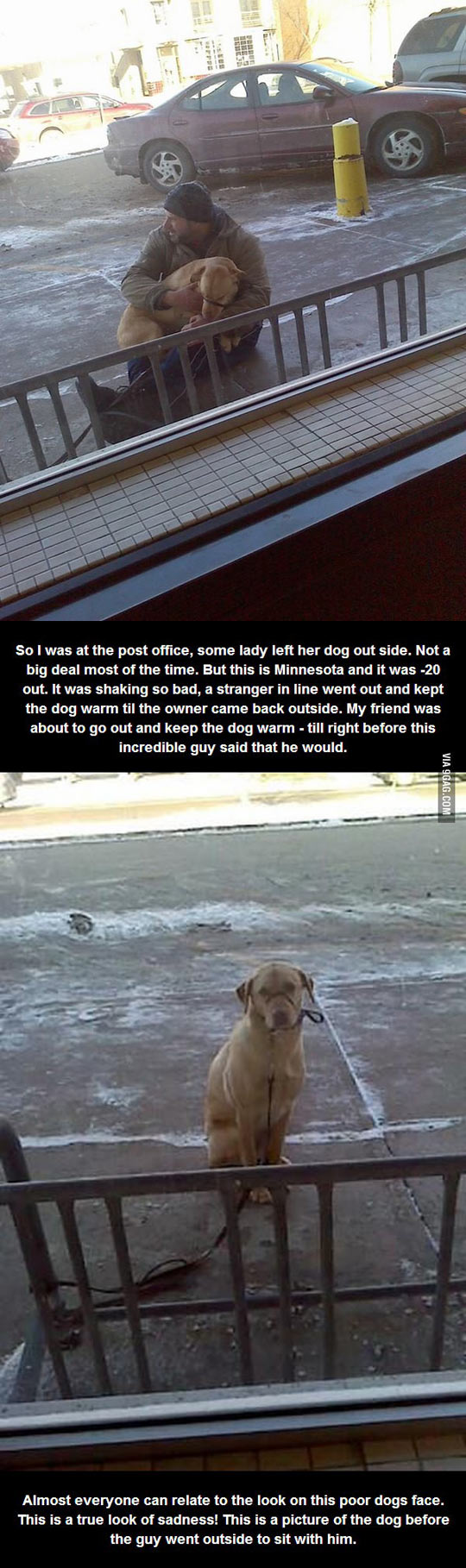 Dogs get cold too…