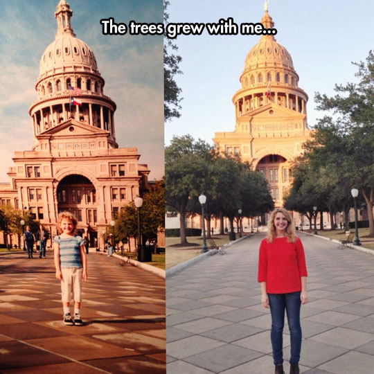 cool-now-then-girl-comparison-trees