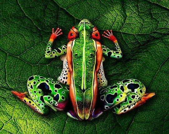 cool-painting-women-frog-design-art
