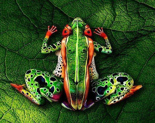 Body painting art…