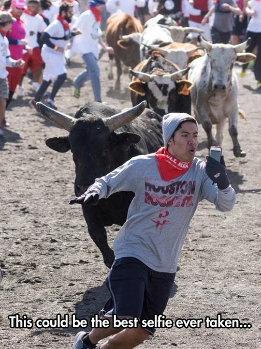 cool-selfie-bull-dangerous-race