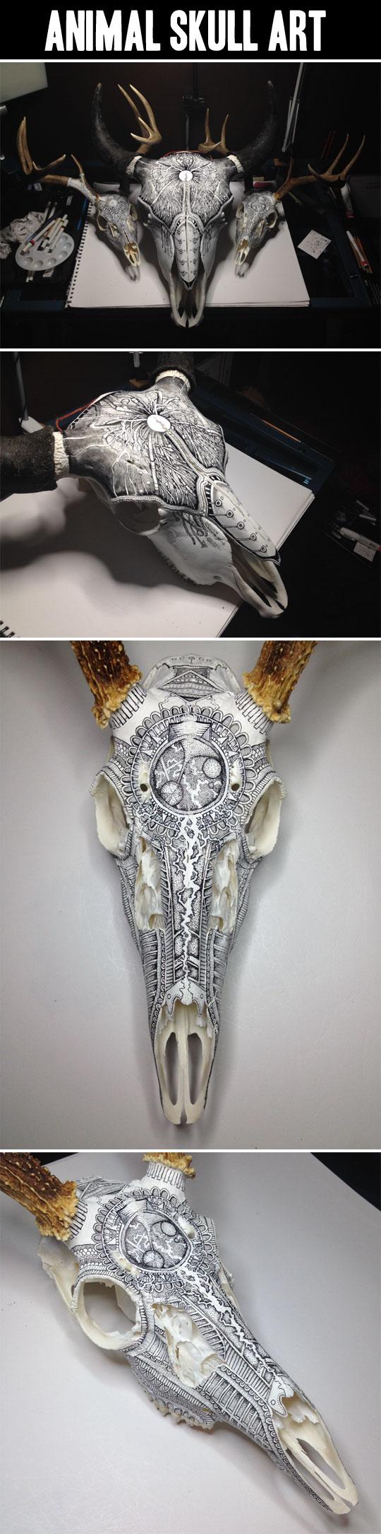 Animal Skull Art…