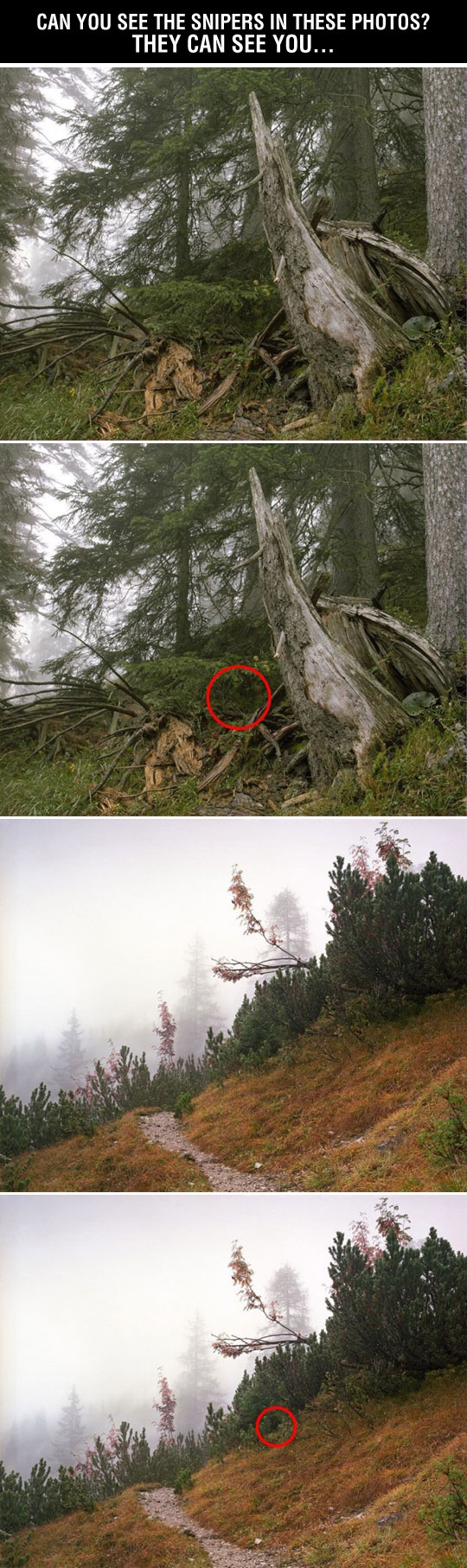 cool-sniper-camouflage-forest-woods-hidden