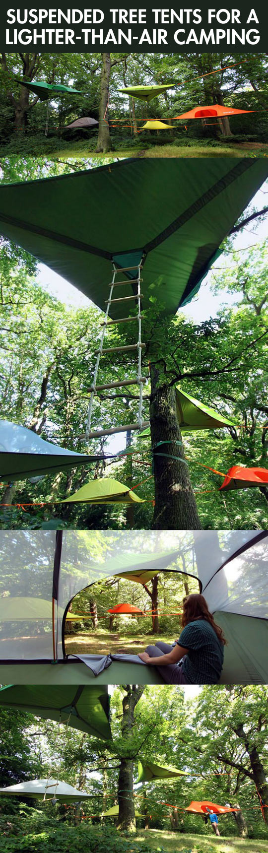 Tree tents...