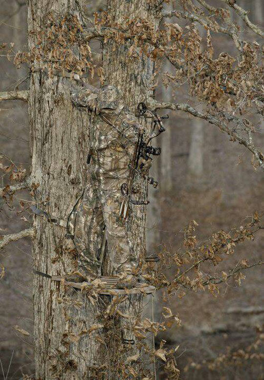 cool-unbelievable-camouflage-soldier-tree