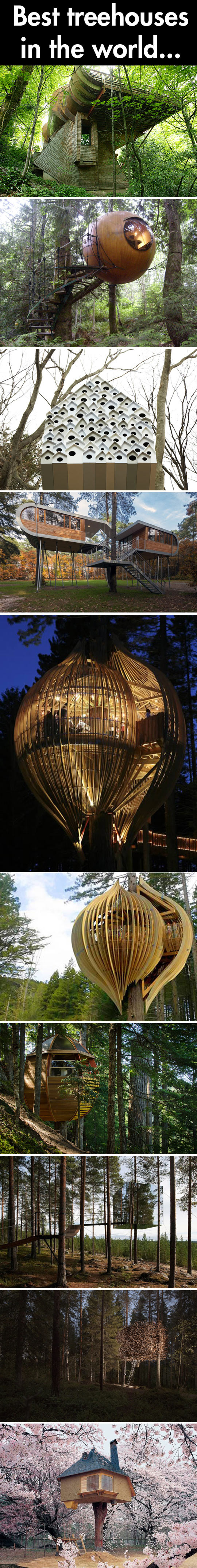 Tree houses of the world…