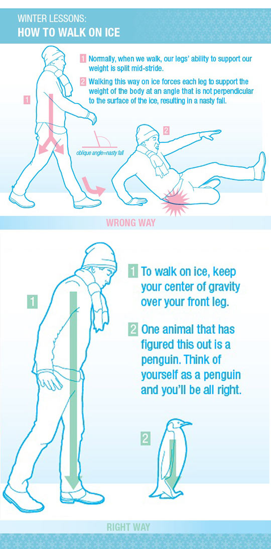 cool-walk-ice-instructions-guide-snow