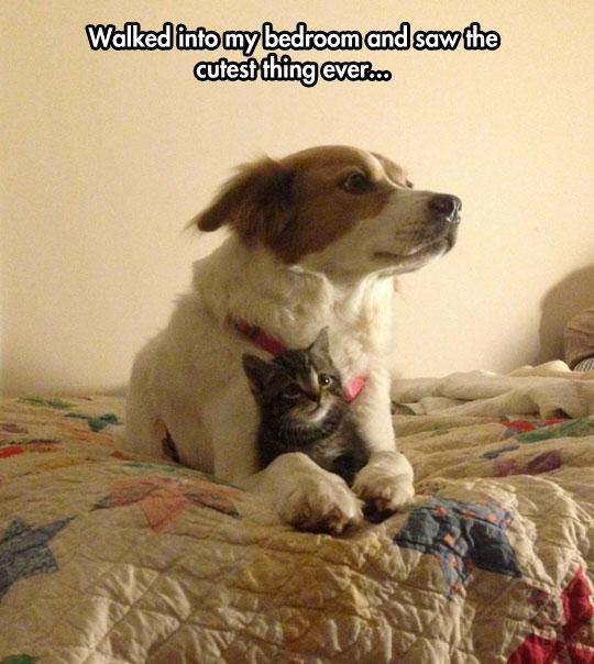 The cutest surprise…