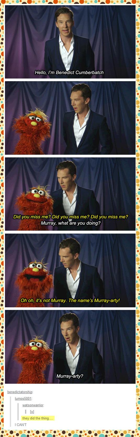 funny-Benedict-Cumberbatch-Murray-Muppet