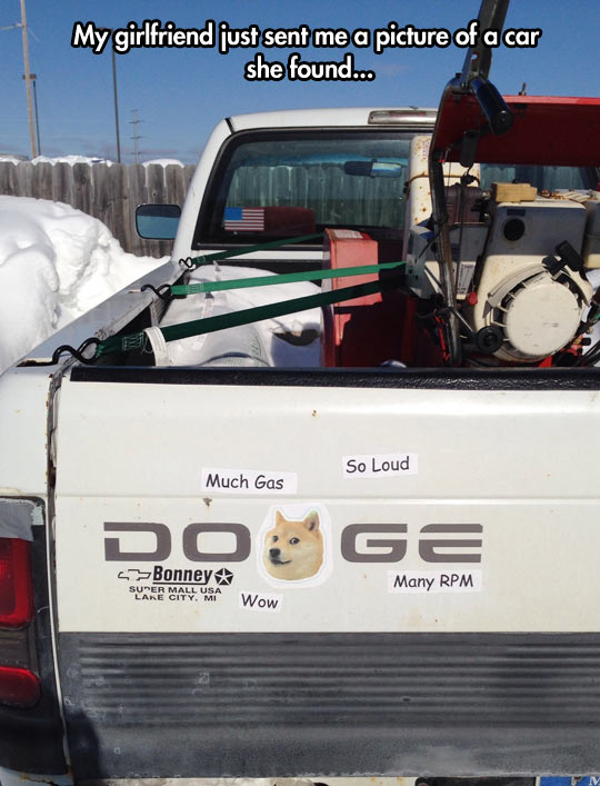 Much car. So Doge. Wow…