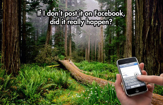 funny-Facebook-trees-woods-phone-photo