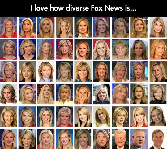 funny Fox news reporters presenters1 diversity in fox news
