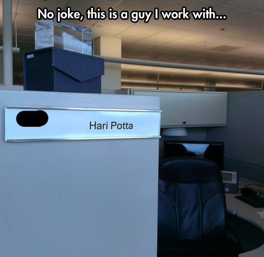 funny-Harry-Potter-office-partner